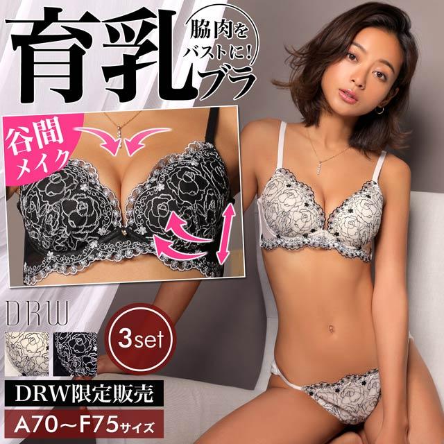 【3点セット】フラワー刺繍チュール育乳脇高ブラジャー&フルバック&Tバックショーツ